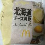 【食レポ】北海道チーズ月見バーガーとチキン月見北海道チーズを食べた感想を会話してみた
