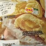 【食レポ】ローソンの「バター広がるメロンパン」と「スパイス広がるカレーパン」の感想を会話してみた