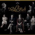 清水葉月、松田凌、樋口日奈(乃木坂46)出演舞台「+GOLD FISH」を観た感想
